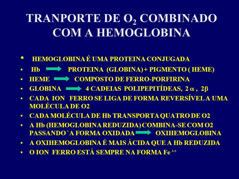 TRANPORTE DE O 2 COMBINADO COM A HEMOGLOBINA HEMOGLOBINA É UMA PROTEINA CONJUGADA Hb PROTEINA (GLOBINA) + PIGMENTO ( HEME) HEME COMPOSTO DE FERRO-PORF