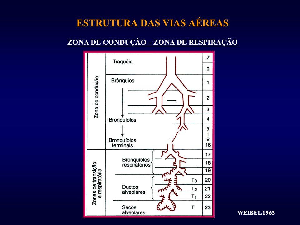 ESTRUTURA DAS VIAS AÉREAS ZONA DE CONDUÇÃO - ZONA DE RESPIRAÇÃO WEIBEL 1963