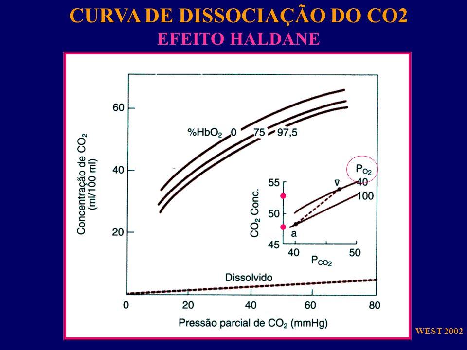 CURVA DE DISSOCIAÇÃO DO CO2 EFEITO HALDANE WEST 2002