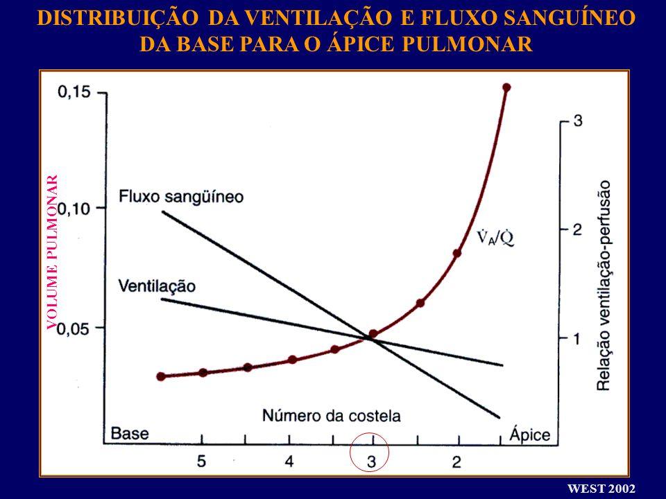 DISTRIBUIÇÃO DA VENTILAÇÃO E FLUXO SANGUÍNEO DA BASE PARA O ÁPICE PULMONAR VOLUME PULMONAR