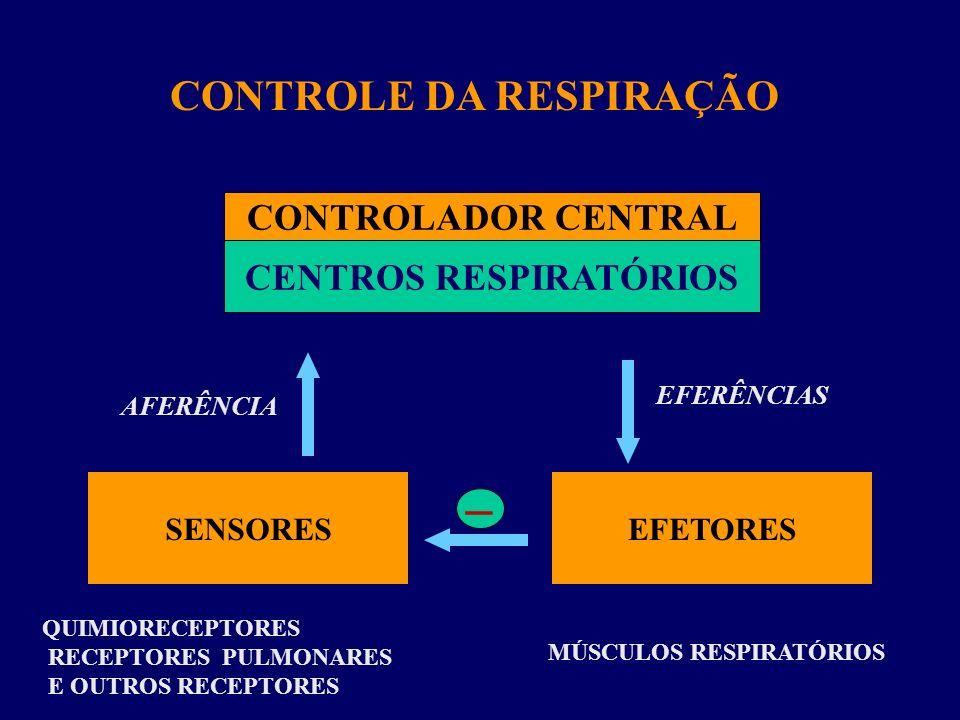 EFETORES SENSORES QUIMIORECEPTORES RECEPTORES PULMONARES E OUTROS RECEPTORES MÚSCULOS RESPIRATÓRIOS AFERÊNCIA EFERÊNCIAS CONTROLE DA RESPIRAÇÃO _ CENT