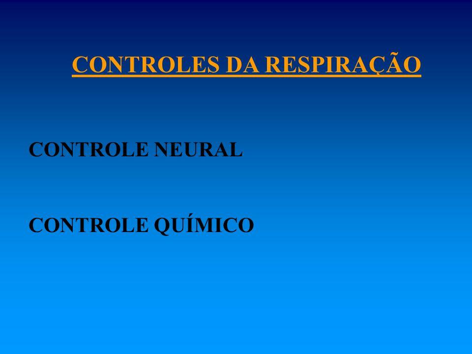 CONTROLES DA RESPIRAÇÃO CONTROLE NEURAL CONTROLE QUÍMICO