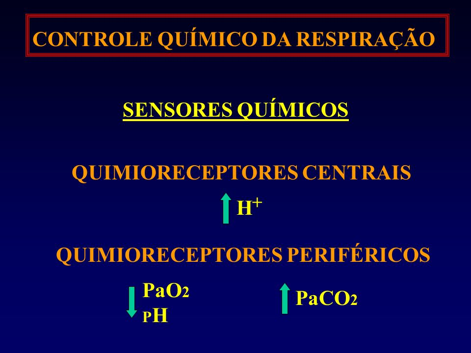 CONTROLE QUÍMICO DA RESPIRAÇÃO SENSORES QUÍMICOS QUIMIORECEPTORES CENTRAIS QUIMIORECEPTORES PERIFÉRICOS H + PaO 2 P H PaCO 2