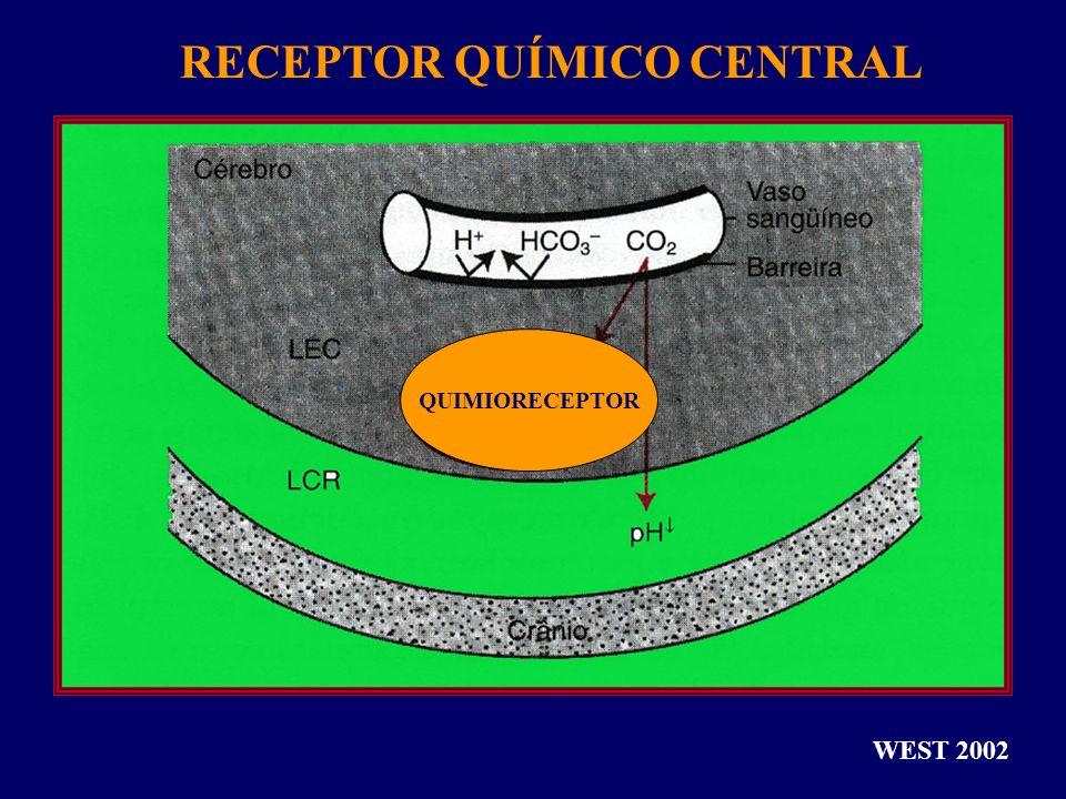 QUIMIORECEPTOR RECEPTOR QUÍMICO CENTRAL WEST 2002