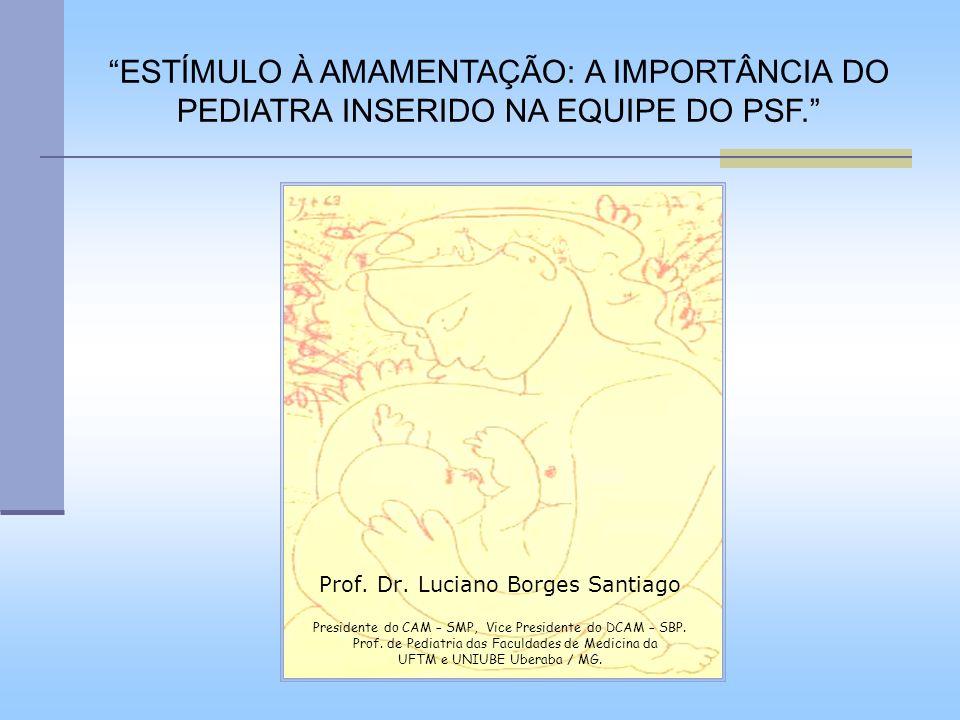 Prof. Dr. Luciano Borges Santiago Presidente do CAM – SMP, Vice Presidente do DCAM – SBP. Prof. de Pediatria das Faculdades de Medicina da UFTM e UNIU