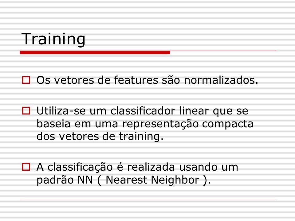 Training Os vetores de features são normalizados.