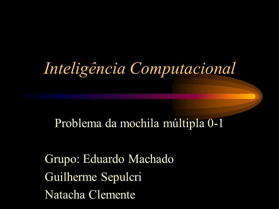 Inteligência Computacional Problema da mochila múltipla 0-1 Grupo: Eduardo Machado Guilherme Sepulcri Natacha Clemente