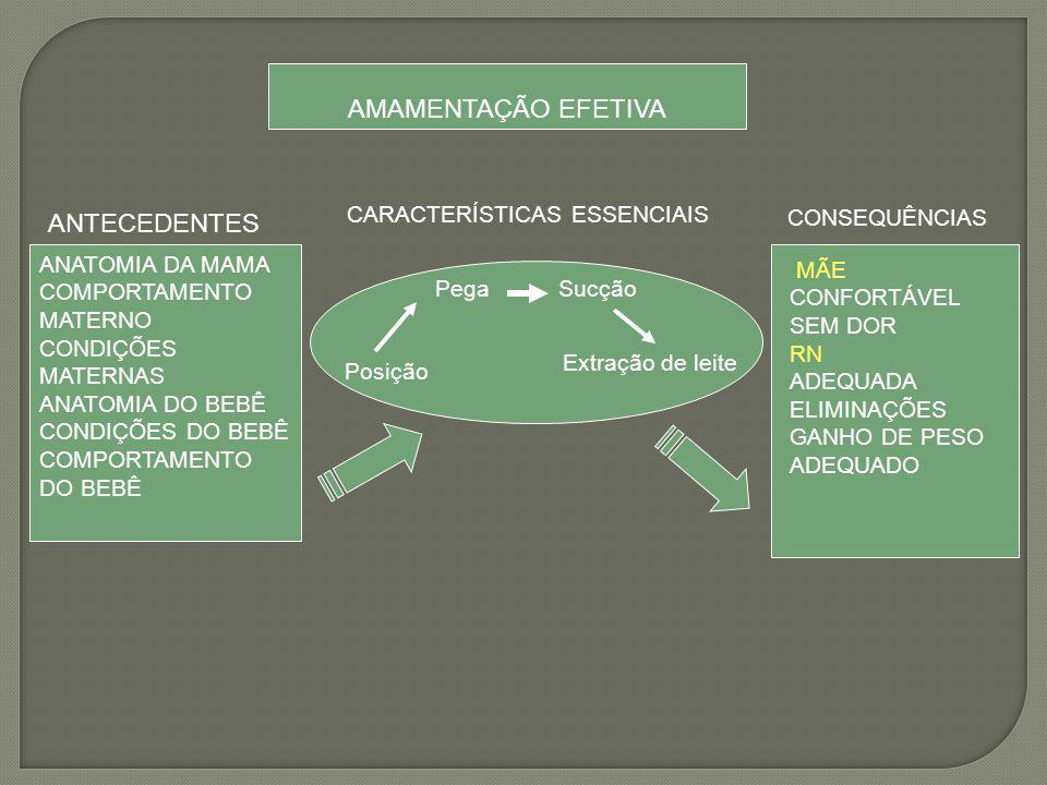 AMAMENTAÇÃO EFETIVA CARACTERÍSTICAS ESSENCIAIS ANTECEDENTES ANATOMIA DA MAMA COMPORTAMENTO MATERNO CONDIÇÕES MATERNAS ANATOMIA DO BEBÊ CONDIÇÕES DO BE
