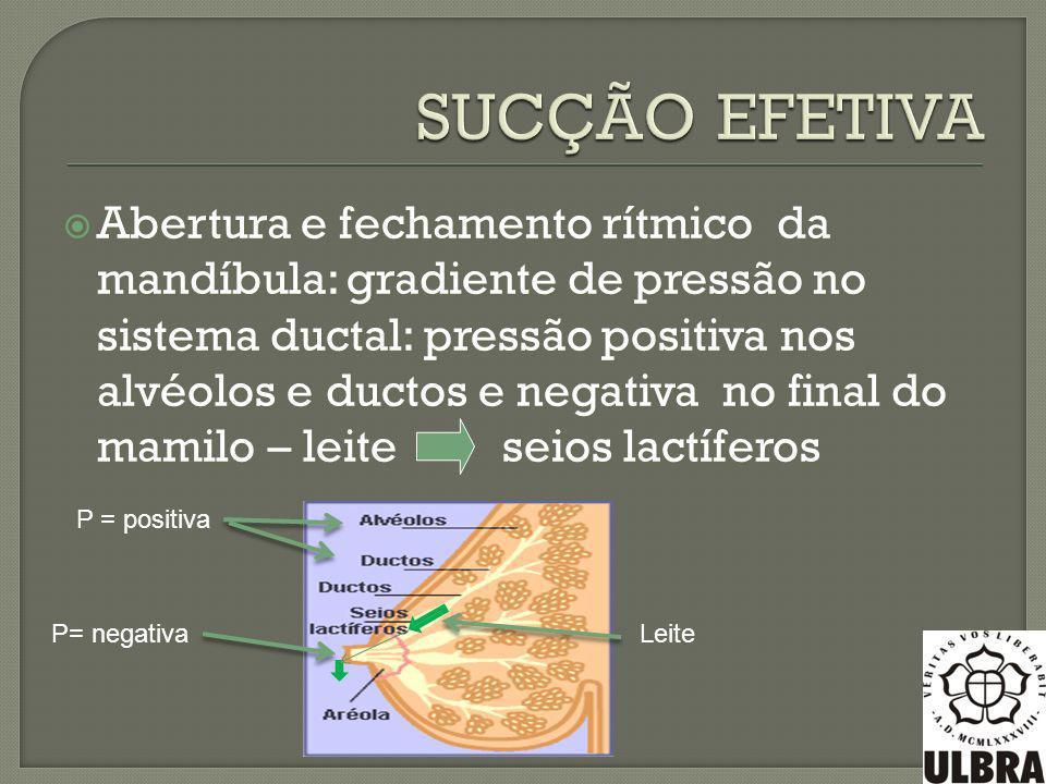 Abertura e fechamento rítmico da mandíbula: gradiente de pressão no sistema ductal: pressão positiva nos alvéolos e ductos e negativa no final do mami
