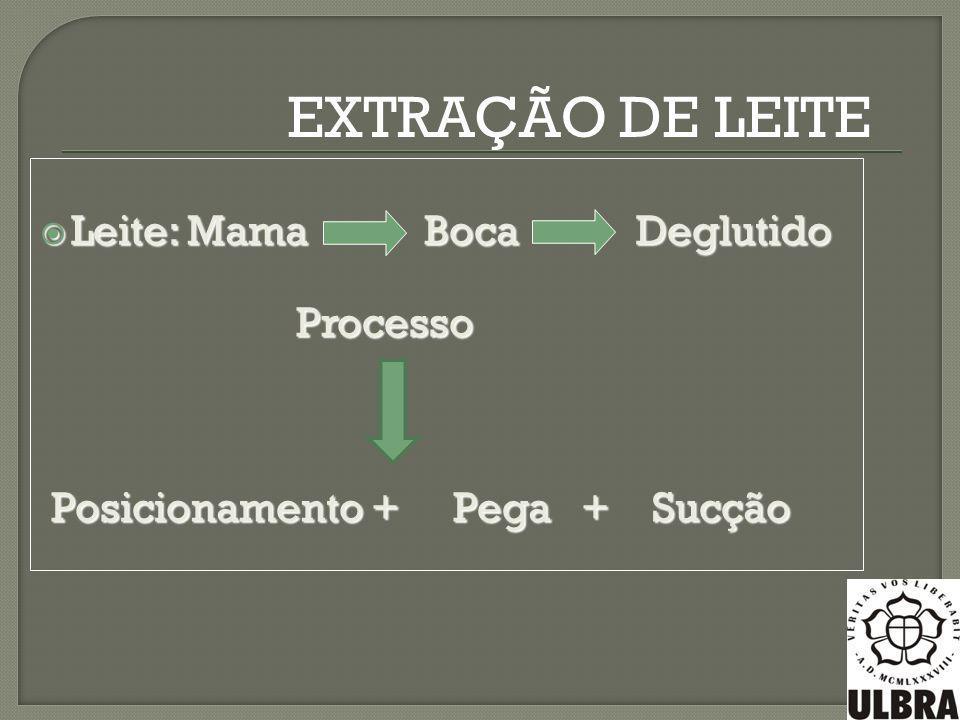 Leite: Mama Boca Deglutido Leite: Mama Boca Deglutido Processo Processo Posicionamento + Pega + Sucção Posicionamento + Pega + Sucção EXTRAÇÃO DE LEIT