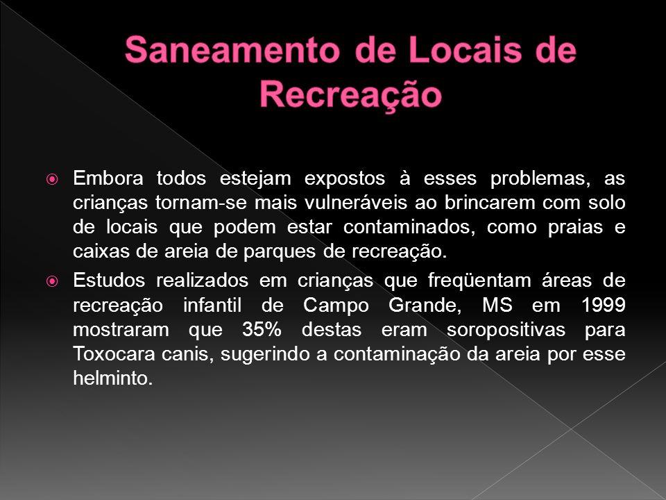 Em Belo Horizonte no ano de 1984 detectou-se que 28,3% das crianças de uma creche apresentavam contaminação por Larva migrans cutânea.