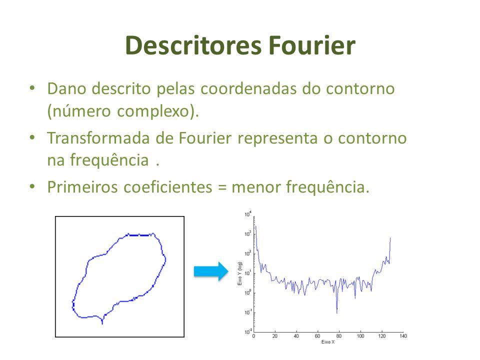 Descritores Fourier Dano descrito pelas coordenadas do contorno (número complexo). Transformada de Fourier representa o contorno na frequência. Primei