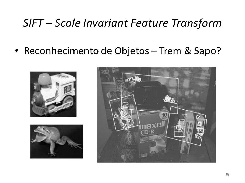 SIFT – Scale Invariant Feature Transform 65 Reconhecimento de Objetos – Trem & Sapo?
