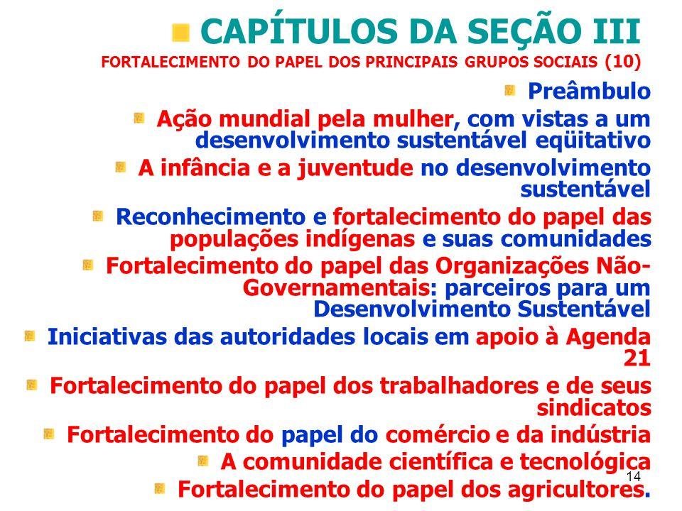 14 CAPÍTULOS DA SEÇÃO III FORTALECIMENTO DO PAPEL DOS PRINCIPAIS GRUPOS SOCIAIS (10) Preâmbulo Ação mundial pela mulher, com vistas a um desenvolvimen