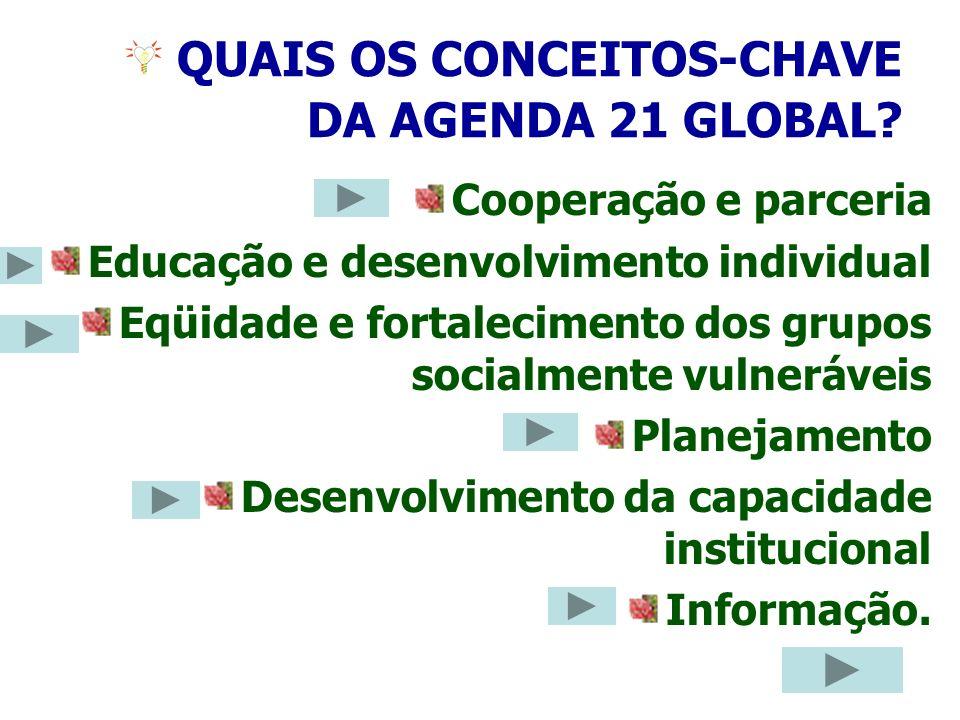 16 QUAIS OS CONCEITOS-CHAVE DA AGENDA 21 GLOBAL? Cooperação e parceria Educação e desenvolvimento individual Eqüidade e fortalecimento dos grupos soci