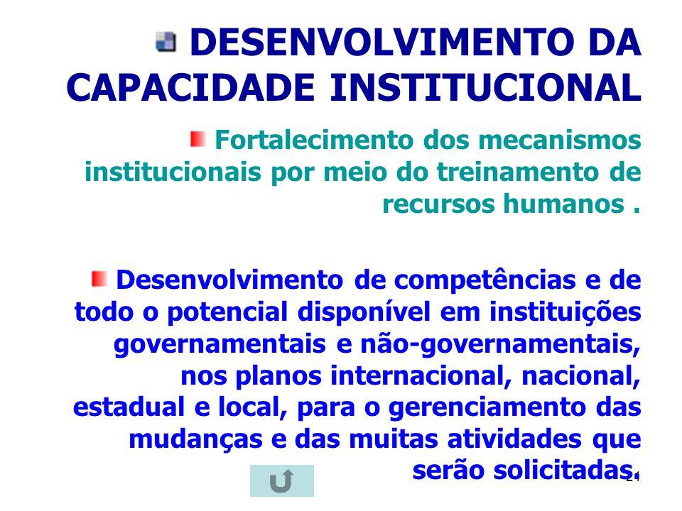 21 DESENVOLVIMENTO DA CAPACIDADE INSTITUCIONAL Fortalecimento dos mecanismos institucionais por meio do treinamento de recursos humanos. Desenvolvimen