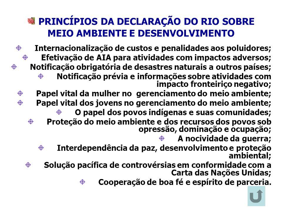 28 PRINCÍPIOS DA DECLARAÇÃO DO RIO SOBRE MEIO AMBIENTE E DESENVOLVIMENTO Internacionalização de custos e penalidades aos poluidores; Efetivação de AIA