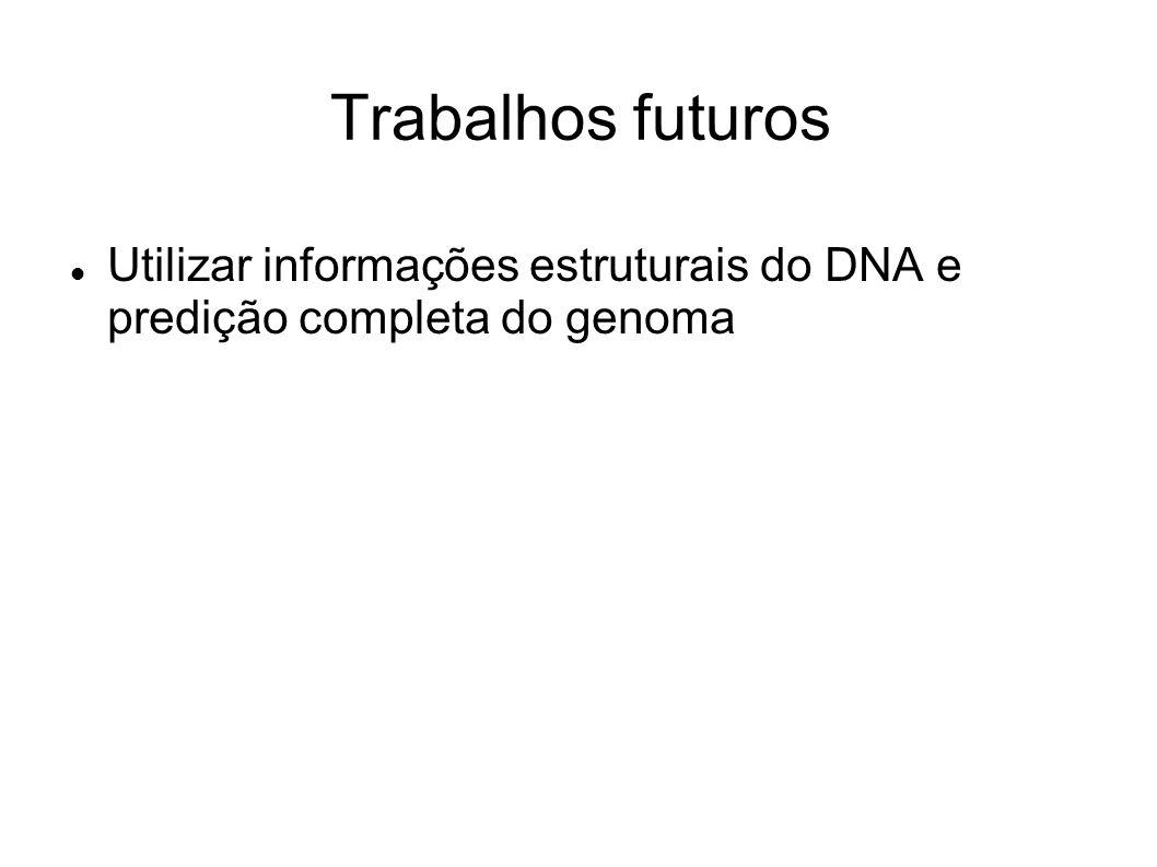 Trabalhos futuros Utilizar informações estruturais do DNA e predição completa do genoma