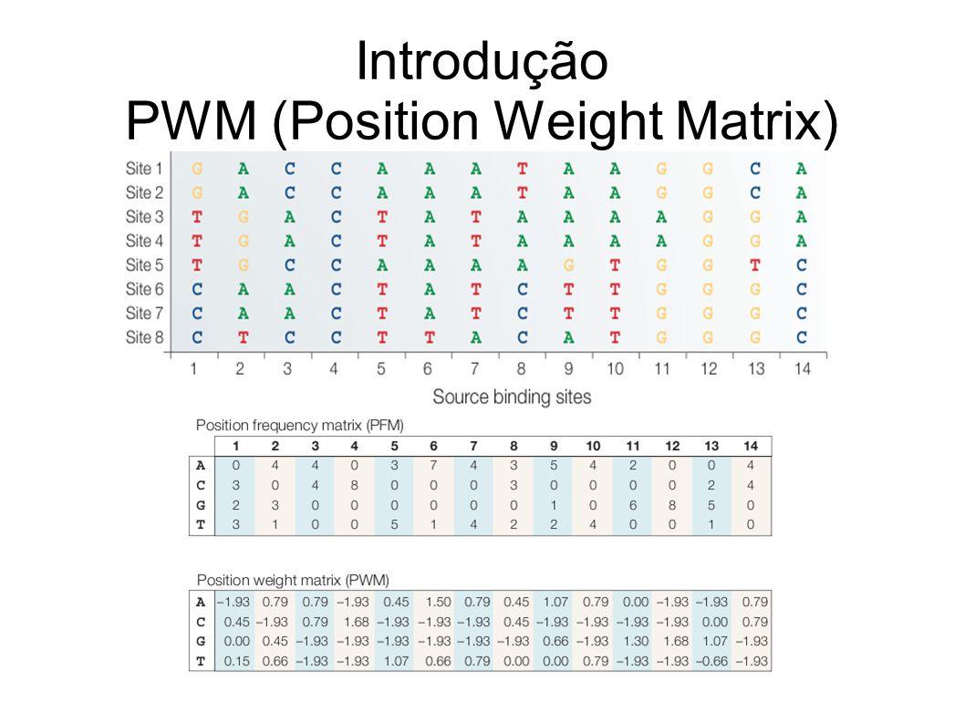 Introdução PWM (Position Weight Matrix)