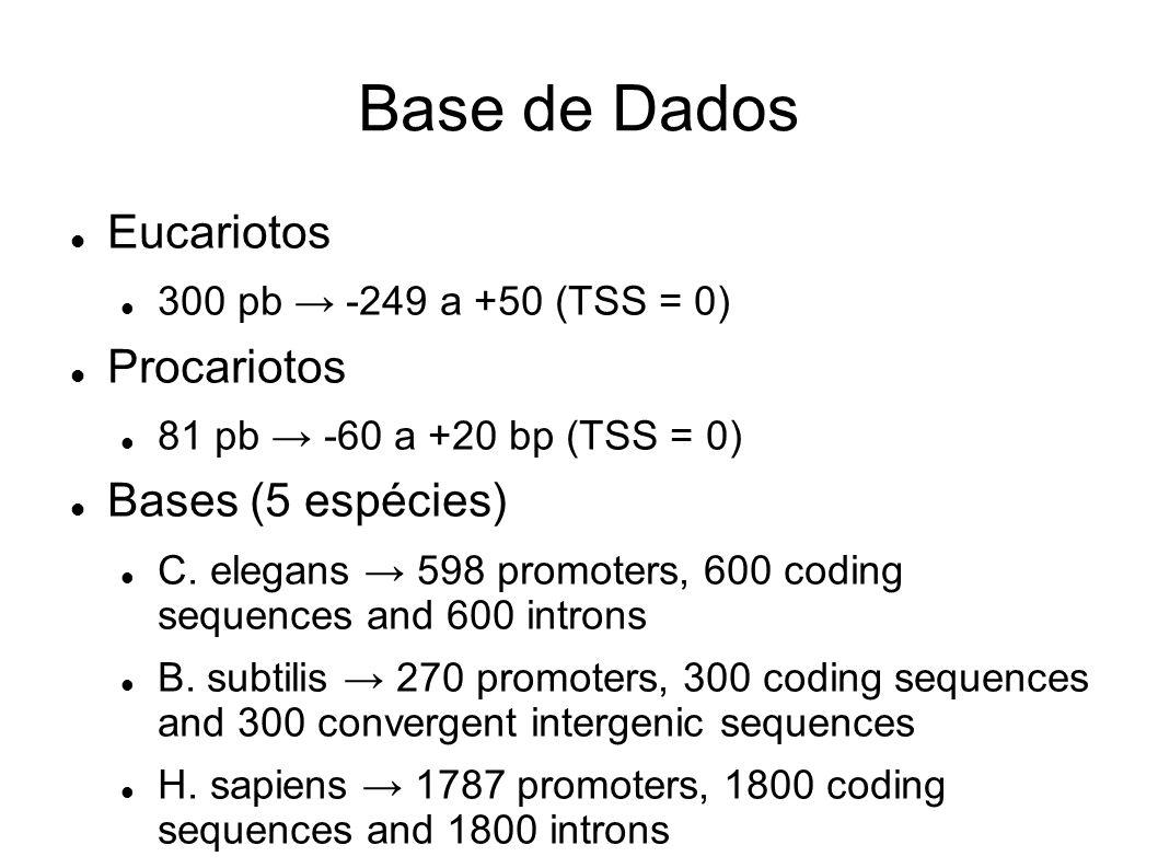 Base de Dados Eucariotos 300 pb -249 a +50 (TSS = 0) Procariotos 81 pb -60 a +20 bp (TSS = 0) Bases (5 espécies) C.