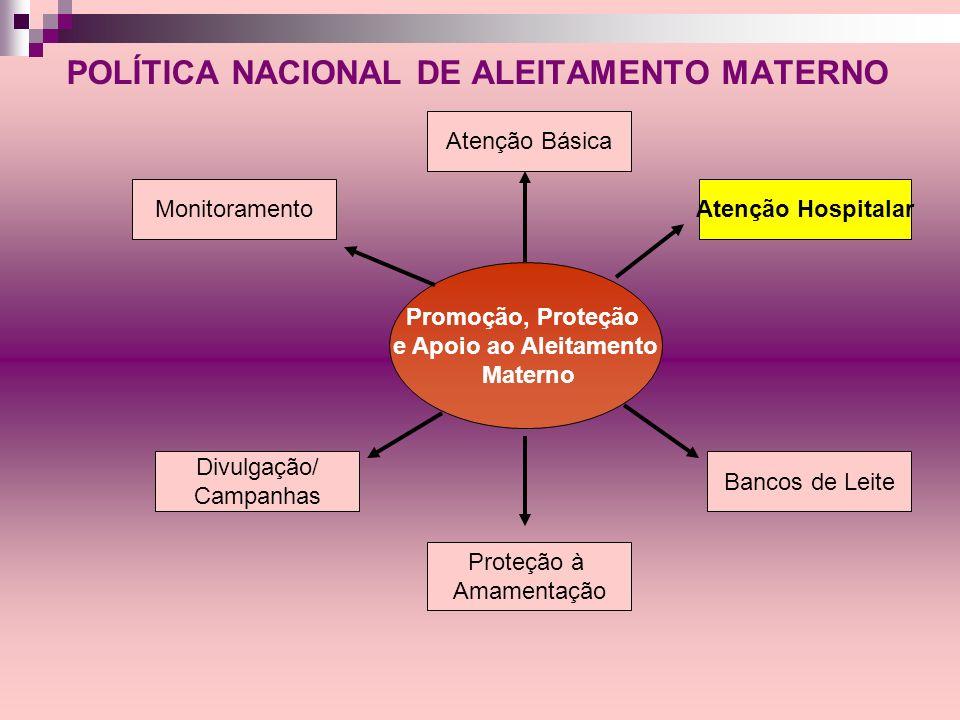 POLÍTICA NACIONAL DE ALEITAMENTO MATERNO Monitoramento Divulgação/ Campanhas Promoção, Proteção e Apoio ao Aleitamento Materno Atenção Básica Proteção