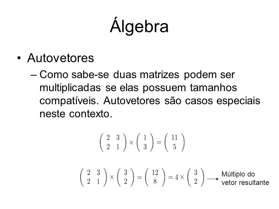 Álgebra Autovetores –Como sabe-se duas matrizes podem ser multiplicadas se elas possuem tamanhos compatíveis. Autovetores são casos especiais neste co
