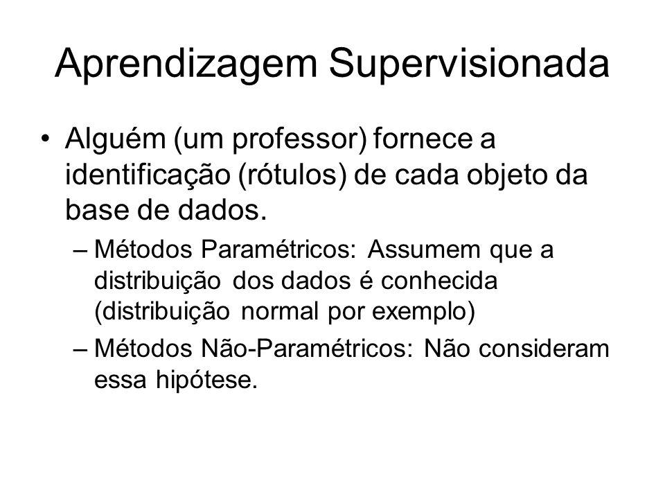 Aprendizagem Supervisionada Alguém (um professor) fornece a identificação (rótulos) de cada objeto da base de dados. –Métodos Paramétricos: Assumem qu