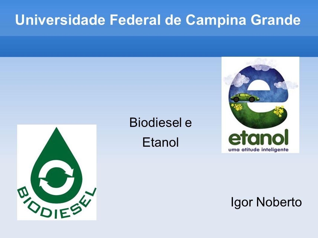 Universidade Federal de Campina Grande Biodiesel e Etanol Igor Noberto