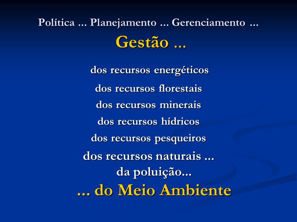 Política... Planejamento... Gerenciamento... Gestão... dos recursos energéticos dos recursos energéticos dos recursos florestais dos recursos minerais