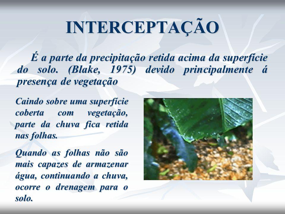 INTERCEPTAÇÃO A interceptação depende de um modo geral: Intensidade da chuva Maior intensidade menor intercepção (Blake, 1975).