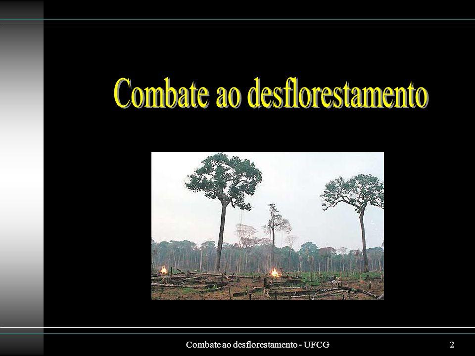 Combate ao desflorestamento - UFCG2