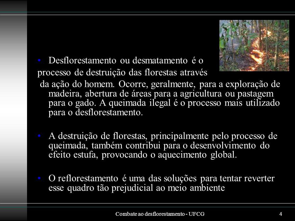 Combate ao desflorestamento - UFCG4 Desflorestamento ou desmatamento é o processo de destruição das florestas através da ação do homem. Ocorre, geralm