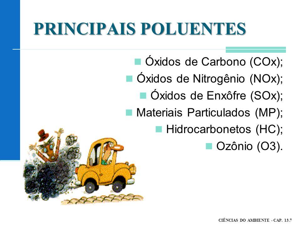 PRINCIPAIS POLUENTES Óxidos de Carbono (COx); Óxidos de Nitrogênio (NOx); Óxidos de Enxôfre (SOx); Materiais Particulados (MP); Hidrocarbonetos (HC); Ozônio (O3).