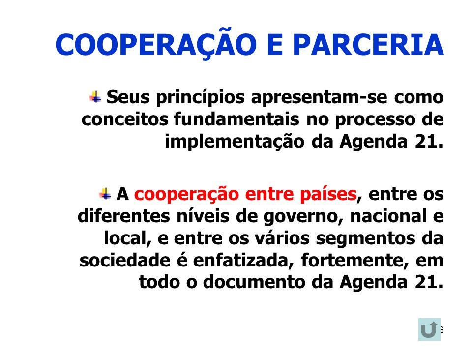 16 COOPERAÇÃO E PARCERIA Seus princípios apresentam-se como conceitos fundamentais no processo de implementação da Agenda 21. A cooperação entre paíse