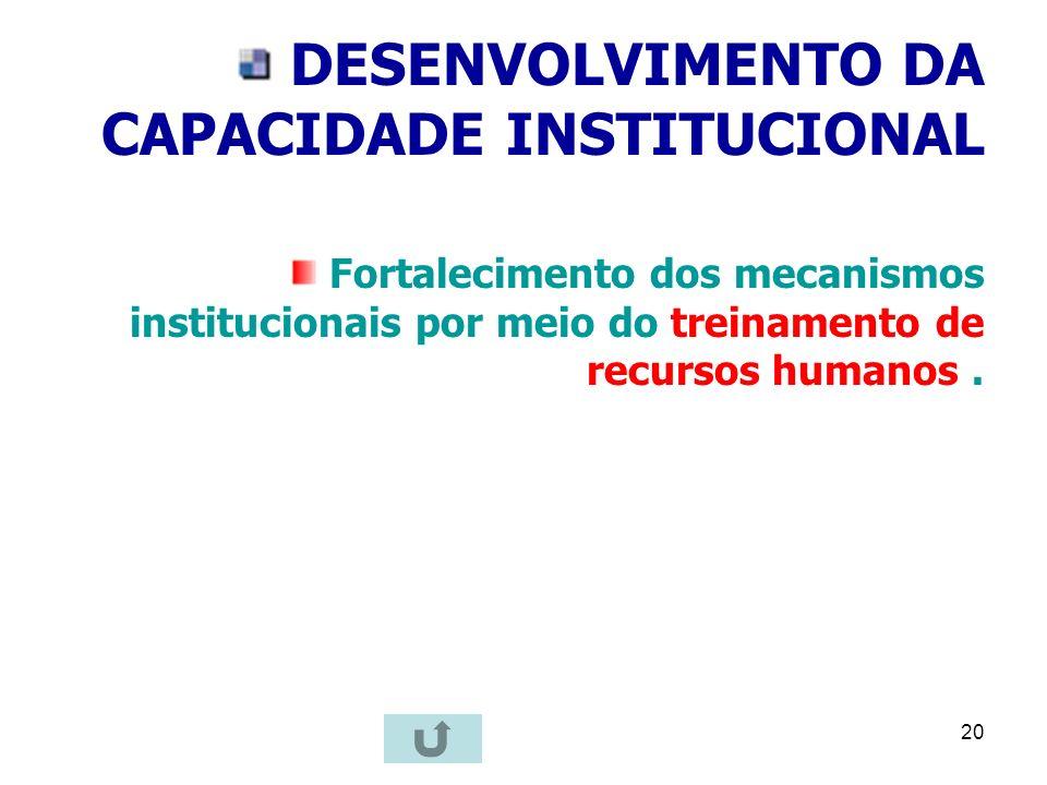 20 DESENVOLVIMENTO DA CAPACIDADE INSTITUCIONAL Fortalecimento dos mecanismos institucionais por meio do treinamento de recursos humanos.