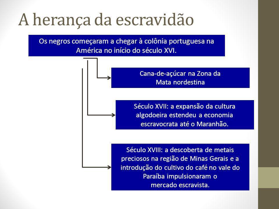 A herança da escravidão Os negros começaram a chegar à colônia portuguesa na América no início do século XVI. Cana-de-açúcar na Zona da Mata nordestin