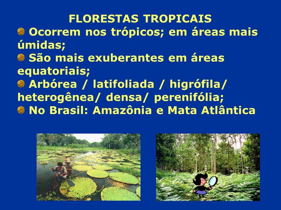 FLORESTAS TROPICAIS Ocorrem nos trópicos; em áreas mais úmidas; São mais exuberantes em áreas equatoriais; Arbórea / latifoliada / higrófila/ heterogê