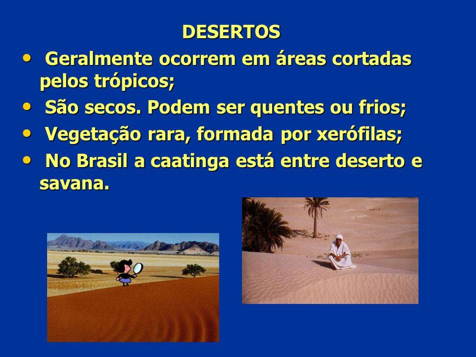 DESERTOS G Geralmente ocorrem em áreas cortadas pelos trópicos; S São secos. Podem ser quentes ou frios; V Vegetação rara, formada por xerófilas; N No