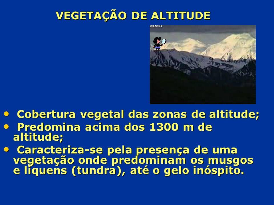 VEGETAÇÃO DE ALTITUDE C Cobertura vegetal das zonas de altitude; P Predomina acima dos 1300 m de altitude; C Caracteriza-se pela presença de uma veget