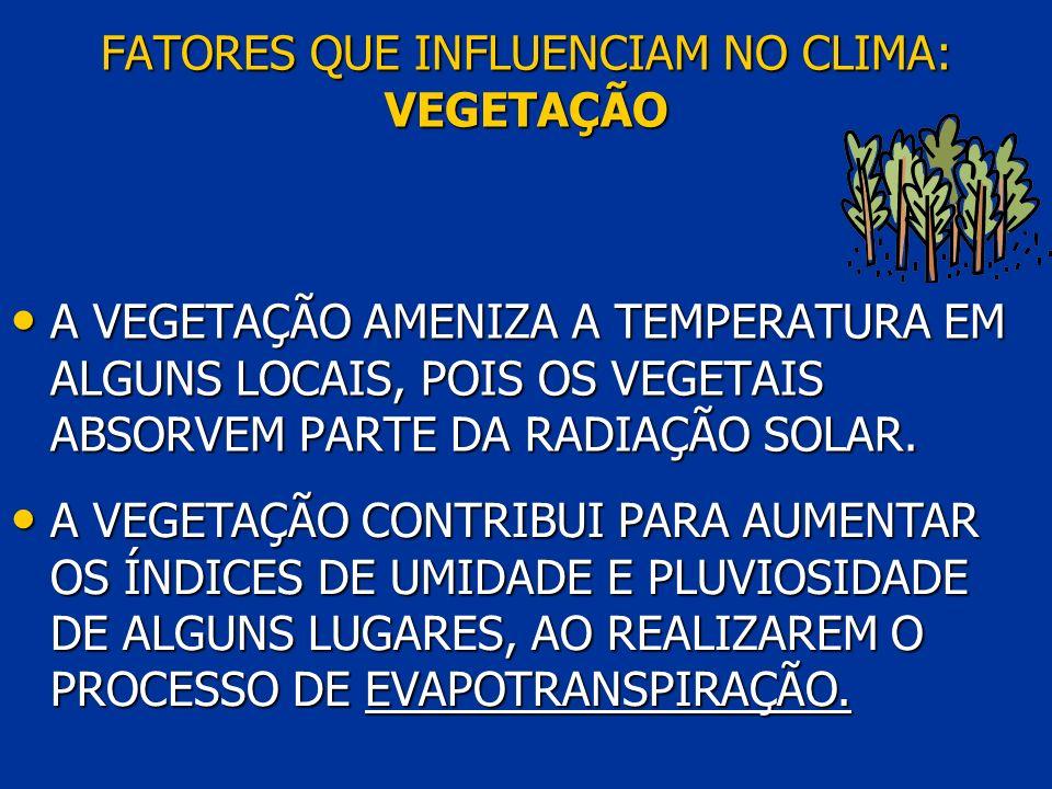 FATORES QUE INFLUENCIAM NO CLIMA: VEGETAÇÃO A VEGETAÇÃO AMENIZA A TEMPERATURA EM ALGUNS LOCAIS, POIS OS VEGETAIS ABSORVEM PARTE DA RADIAÇÃO SOLAR. A V