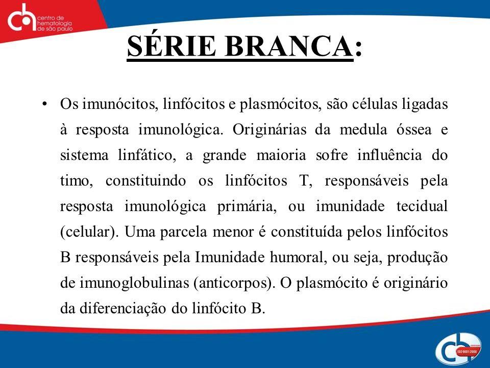 SÉRIE BRANCA: Os imunócitos, linfócitos e plasmócitos, são células ligadas à resposta imunológica. Originárias da medula óssea e sistema linfático, a