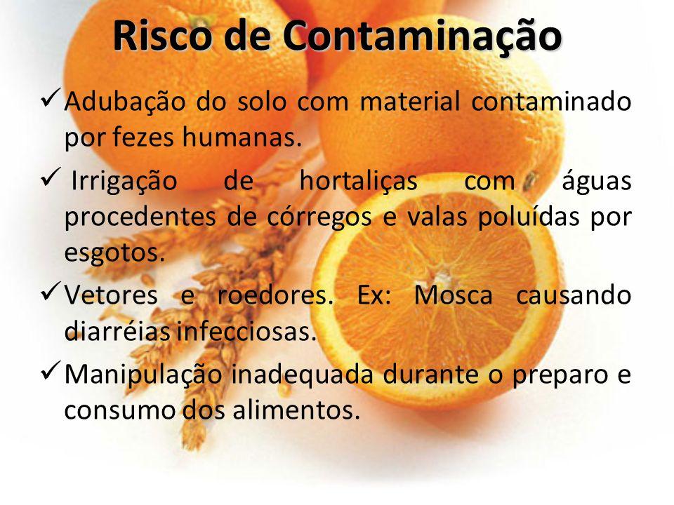 Risco de Contaminação Adubação do solo com material contaminado por fezes humanas. Irrigação de hortaliças com águas procedentes de córregos e valas p