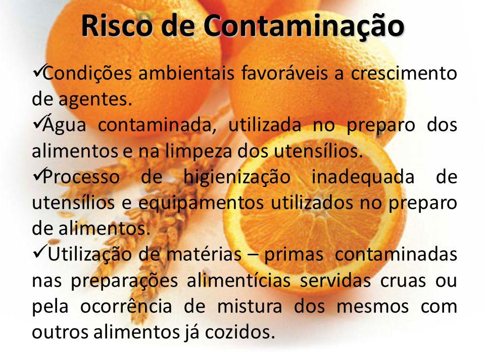 Condições ambientais favoráveis a crescimento de agentes. Água contaminada, utilizada no preparo dos alimentos e na limpeza dos utensílios. Processo d