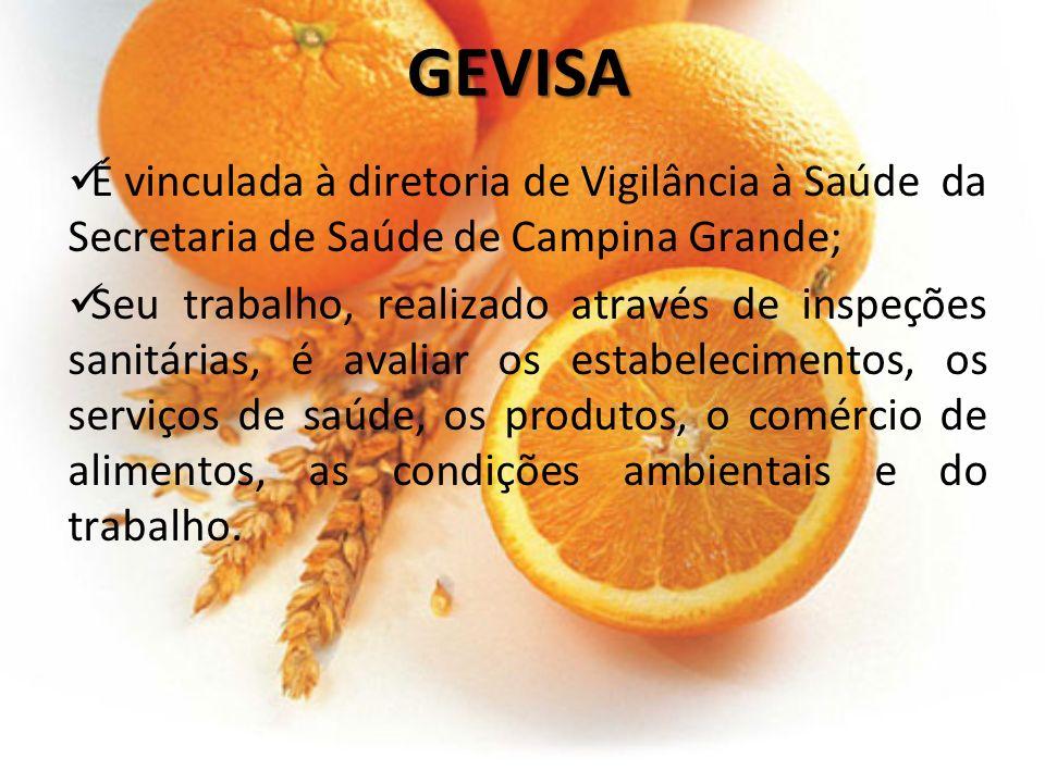 GEVISA É vinculada à diretoria de Vigilância à Saúde da Secretaria de Saúde de Campina Grande; Seu trabalho, realizado através de inspeções sanitárias