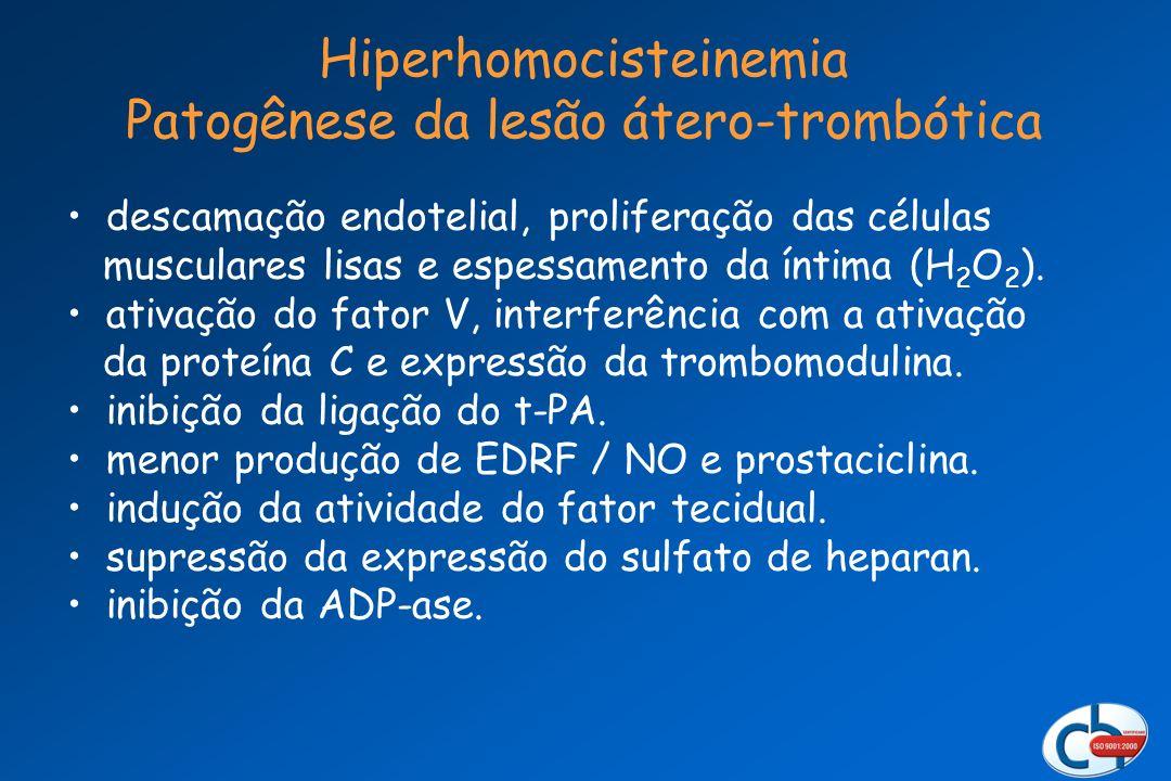 Hiperhomocisteinemia Patogênese da lesão átero-trombótica descamação endotelial, proliferação das células musculares lisas e espessamento da íntima (H