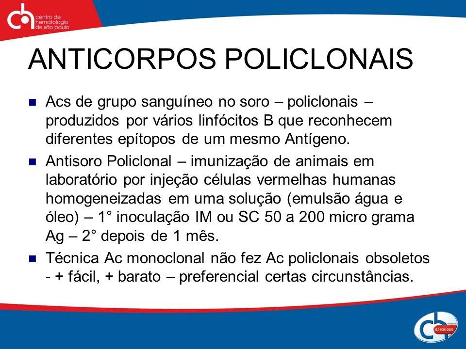 ANTICORPOS POLICLONAIS Acs de grupo sanguíneo no soro – policlonais – produzidos por vários linfócitos B que reconhecem diferentes epítopos de um mesm
