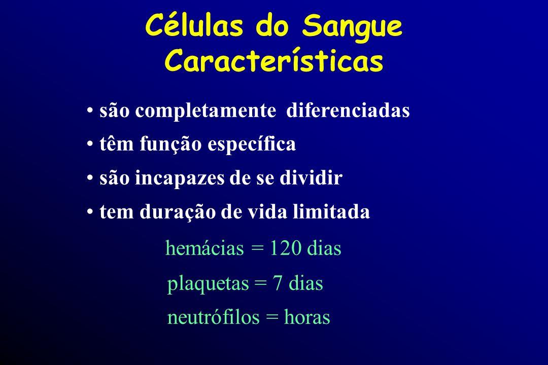 Células do Sangue Características são completamente diferenciadas têm função específica são incapazes de se dividir tem duração de vida limitada hemác