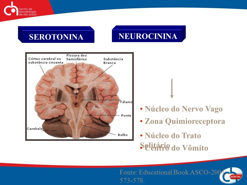 Fonte: Educational Book ASCO-2004; 573-578. SEROTONINA NEUROCININA Núcleo do Nervo Vago Zona Quimioreceptora Núcleo do Trato Solitário Centro do Vômit