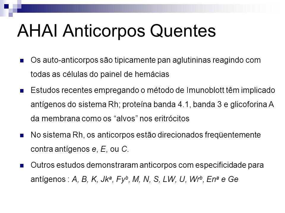 AHAI Anticorpos Quentes Os auto-anticorpos são tipicamente pan aglutininas reagindo com todas as células do painel de hemácias Estudos recentes empregando o método de Imunoblott têm implicado antígenos do sistema Rh; proteína banda 4.1, banda 3 e glicoforina A da membrana como os alvos nos eritrócitos No sistema Rh, os anticorpos estão direcionados freqüentemente contra antígenos e, E, ou C.