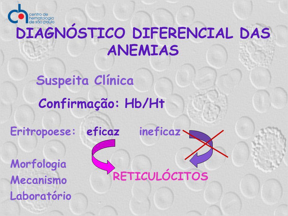 DIAGNÓSTICO DIFERENCIAL DAS ANEMIAS Eritropoese: eficaz ineficaz Morfologia Mecanismo Laboratório Suspeita Clínica Confirmação: Hb/Ht RETICULÓCITOS